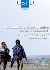 Is combating desertification a global public good?